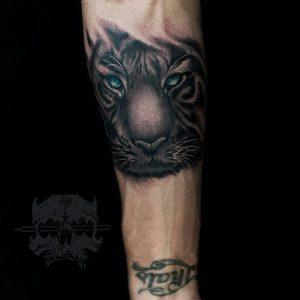 Tattoo tigre antebrazo