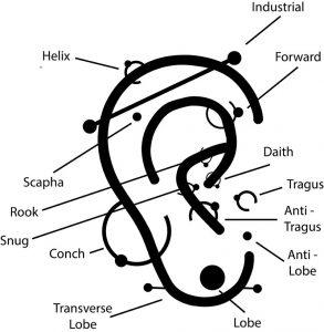Tipos de piercing en la oreja (Obsession Tattoo)
