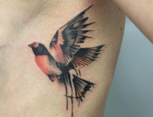 Tatuaje pájaro a color mediano.
